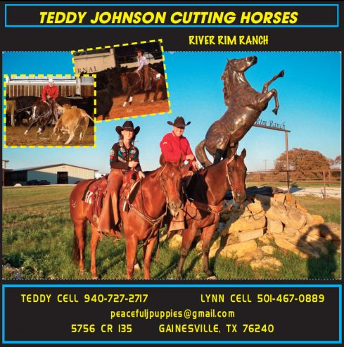 Cutting-Horse-For-Sale