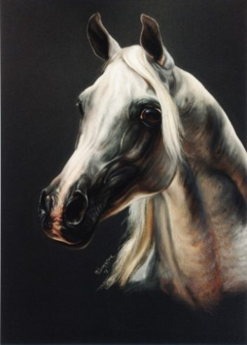 Equine-Art