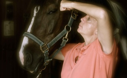Horses-n-Hounds-Veterinary-Services